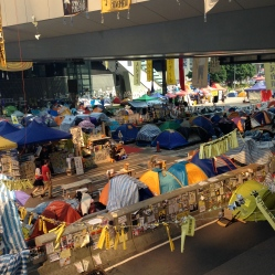 Tent rows 05